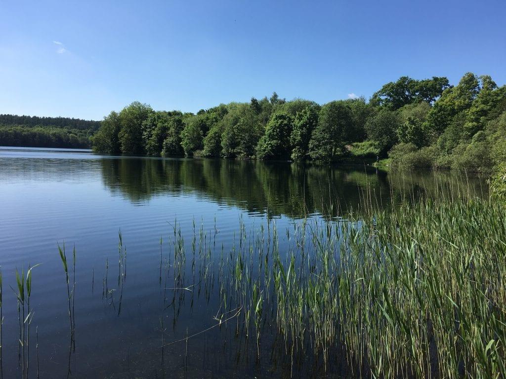 Am See bei Dutzow - Fahrradtour um den Schaalsee