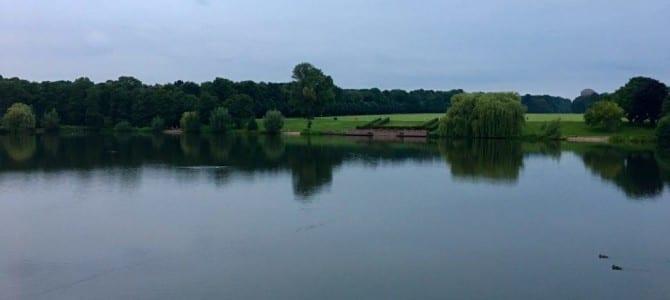 Nach dem Regen: Schöne Stimmung am Hamburger Stadtparksee
