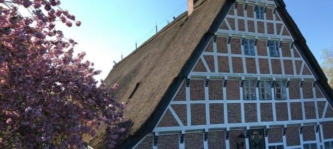 Wandern im Alten Land: Von Buxtehude an der Este entlang bis zur Elbe nach Finkenwerder