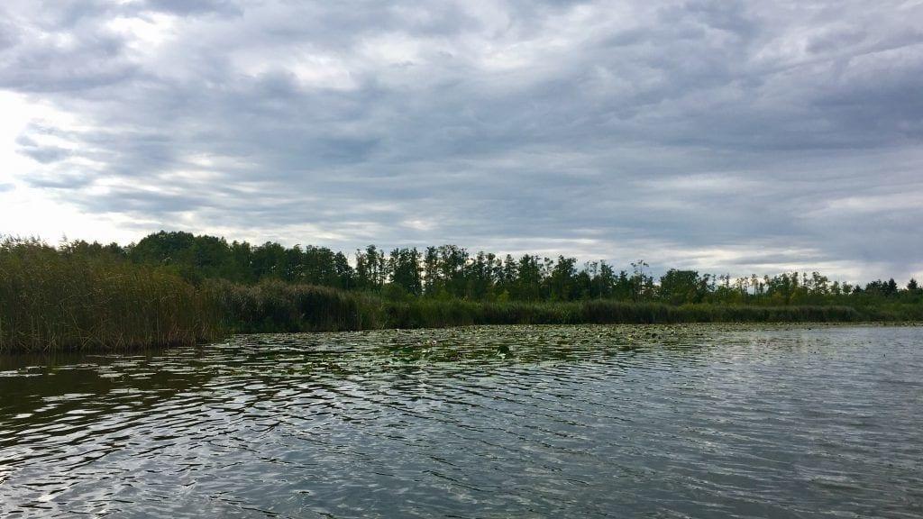 Auf dem Sumpfsee im Mirower Kanal