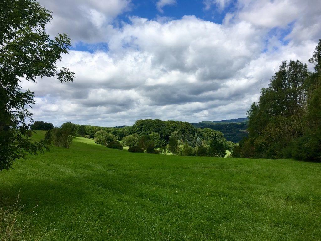 Schöner Blick bei Bad Lauterberg im Harz