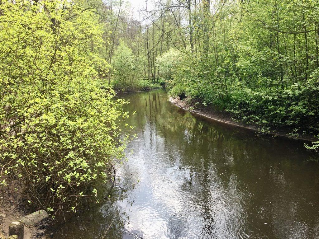 Der Alsterlauf in Wellingsbüttel