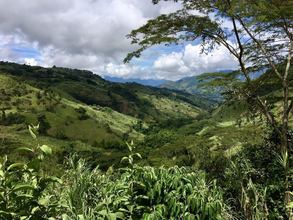Landschaft in der Kaffeeregion Kolumbiens bei Manizales