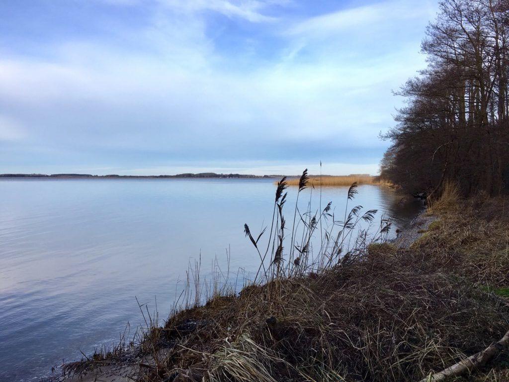 Einsame und winterliche Bucht am Achterwasser