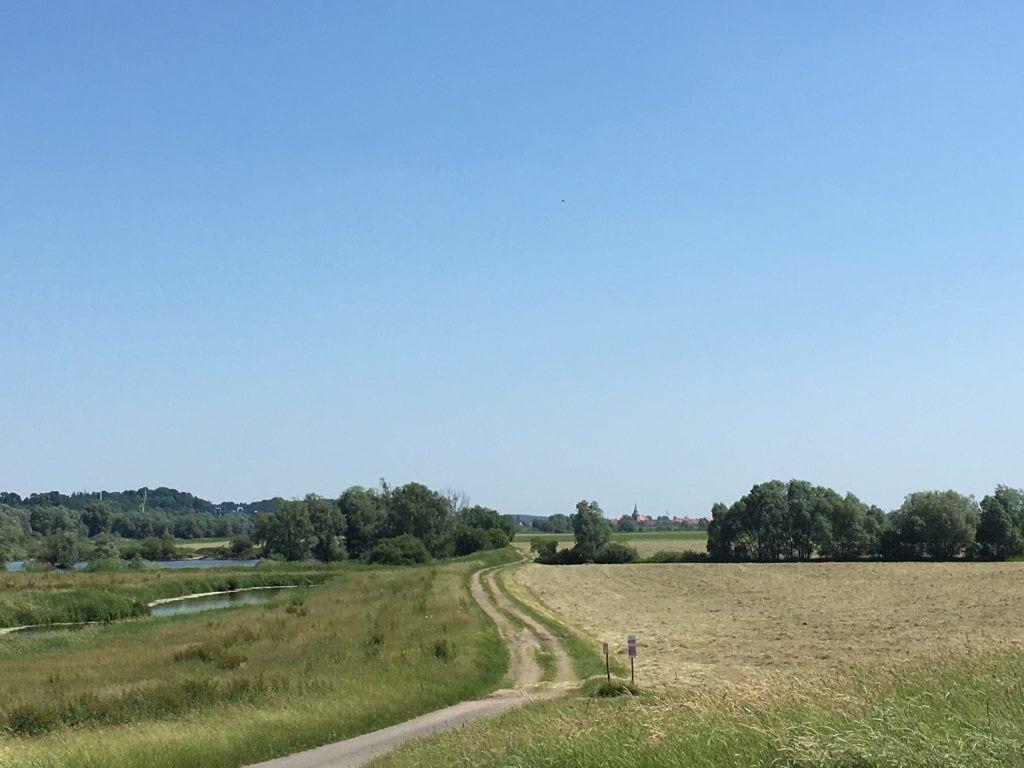 Blick vom südlichen Elberadweg nach Boitzenburg