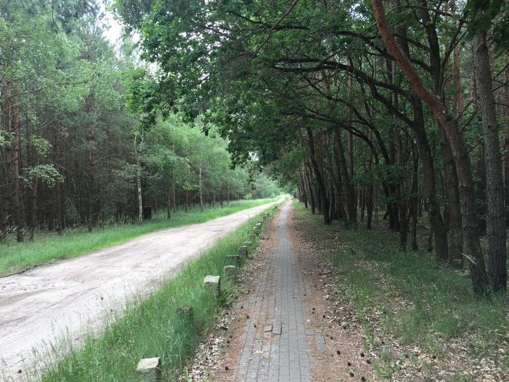 Fahrradweg bei Osterholz