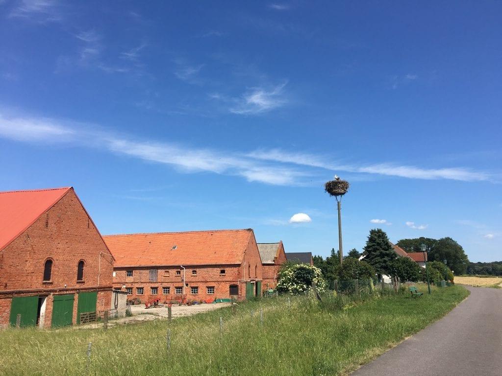Storchennest an der Elbe - Fahrradtour von Hitzacker nach Wittenberge