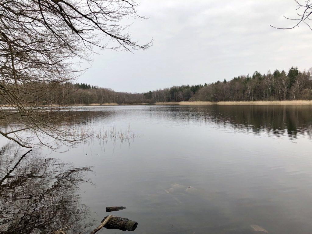 Der Bredenbeker Teich bei Ahrensburg