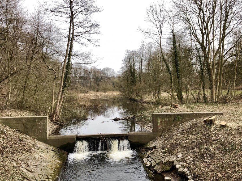 Der Pulverhofteich am Wandse-Radweg