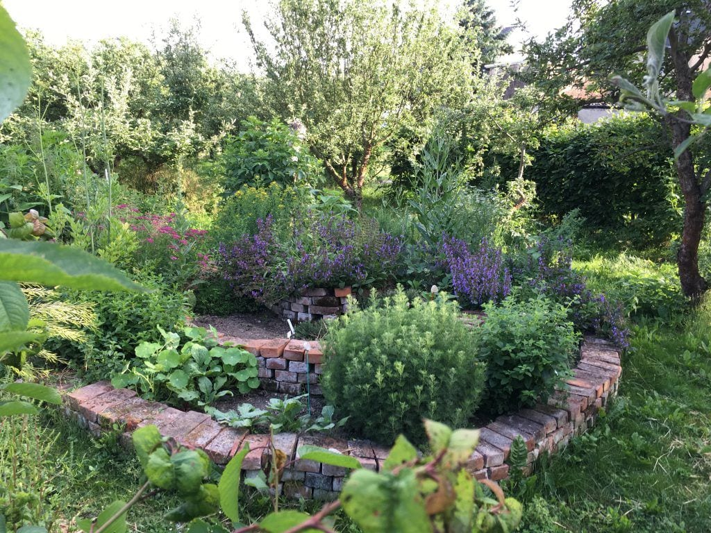 Im Garten von Cornelia in Breitenhagen an der Elbe