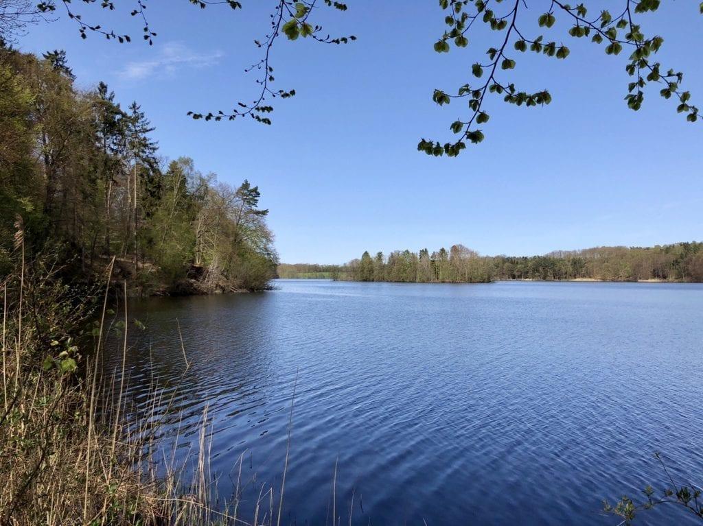 Wanderung durch das Hellbachtal an die Lauenburgischen Seen: Blick auf den Drüsensee mit Bismarckinsel