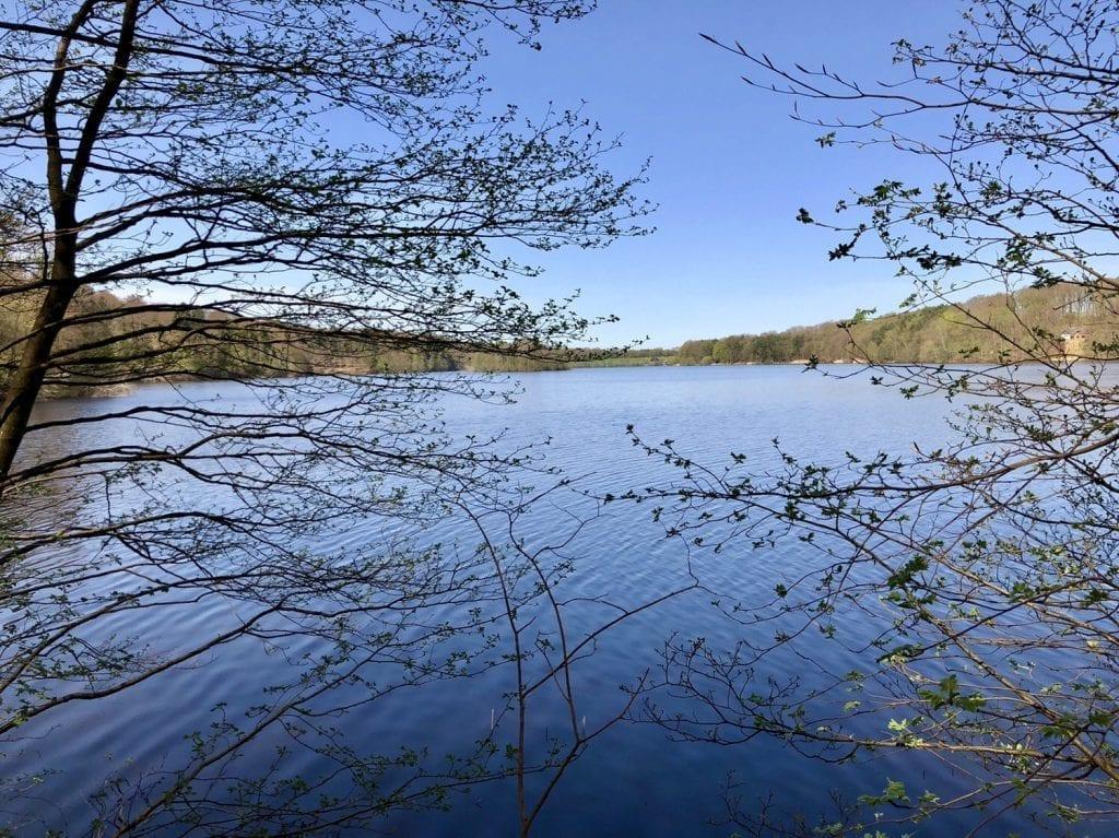 Der Luttauer See bei Mölln