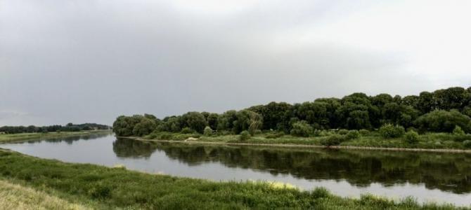 Elberadweg: Fahrradtour von Torgau nach Riesa