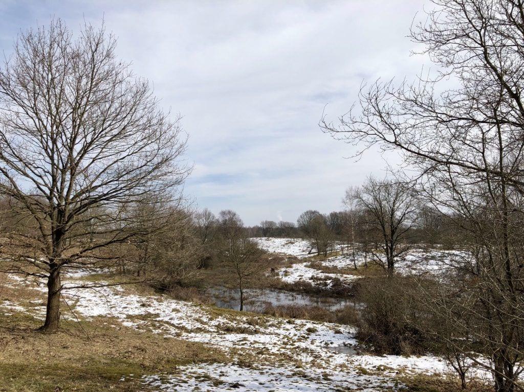 Winterliche Landschaft im Naturschutzgebiet Höltigbaum in Hamburg