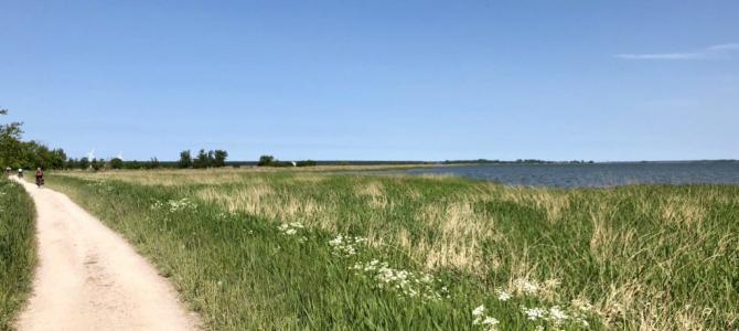 Fahrradtour auf dem Ostseeradweg: Von Warnemünde auf den Darß