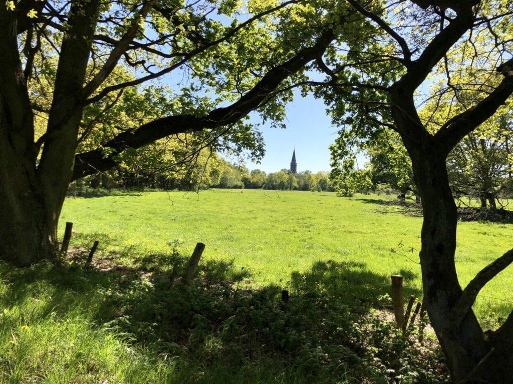 Im Naturschutzgebiet Boberger Niederung mit Blick zum Friedhof Billwerder und dessen Kirche