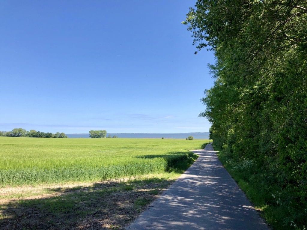 Radweg bei Barth mit Blick auf den Barther Bodden
