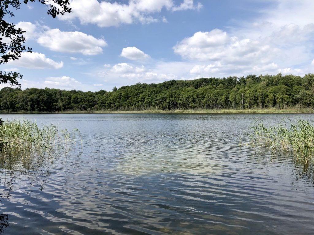 Am Großen See / Pinnower See bei Wangelkow