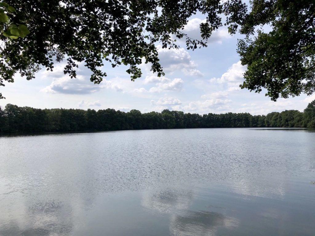 Blick über den Papendorfer See bei Lassan