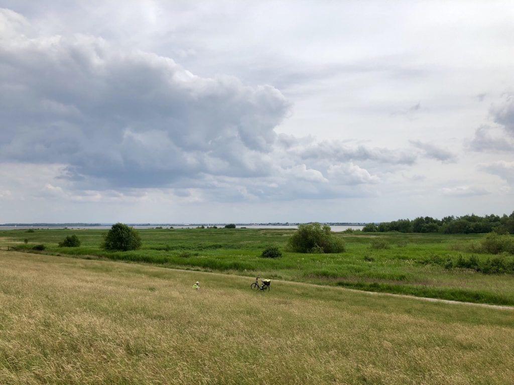 Blick über das Elbvorland bei Haseldorf