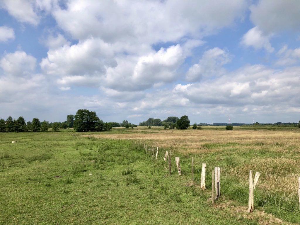 Das Marschland bei Wedel in Schleswig-Holstein
