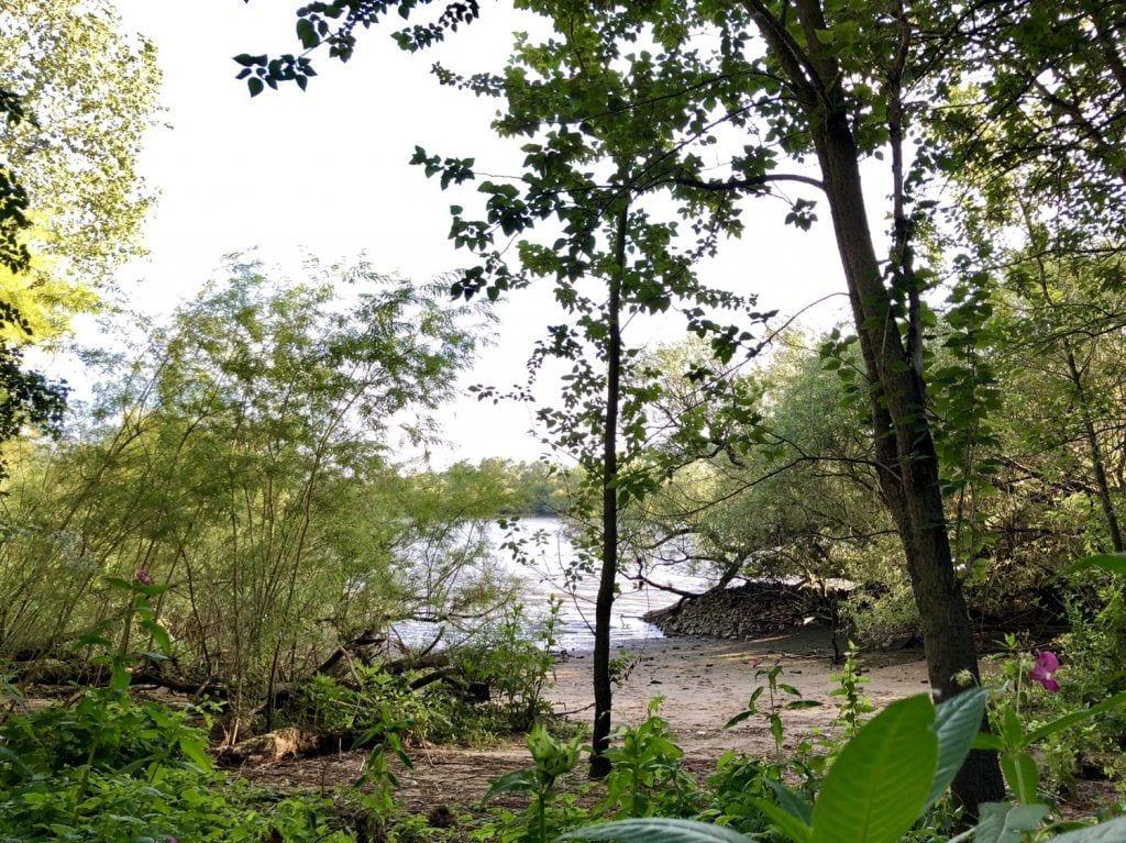 Ein kleiner Strand im Naturschutzgebiet Heuckenlock