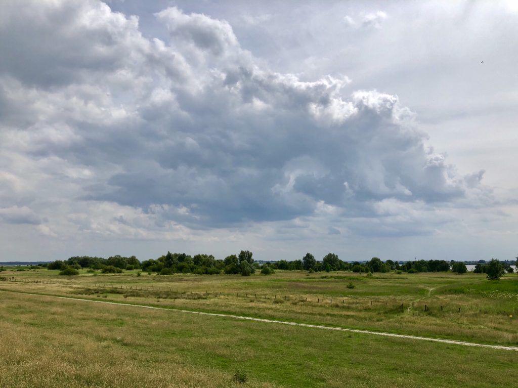 Marschlandschaft an der Elbe bei Wedel