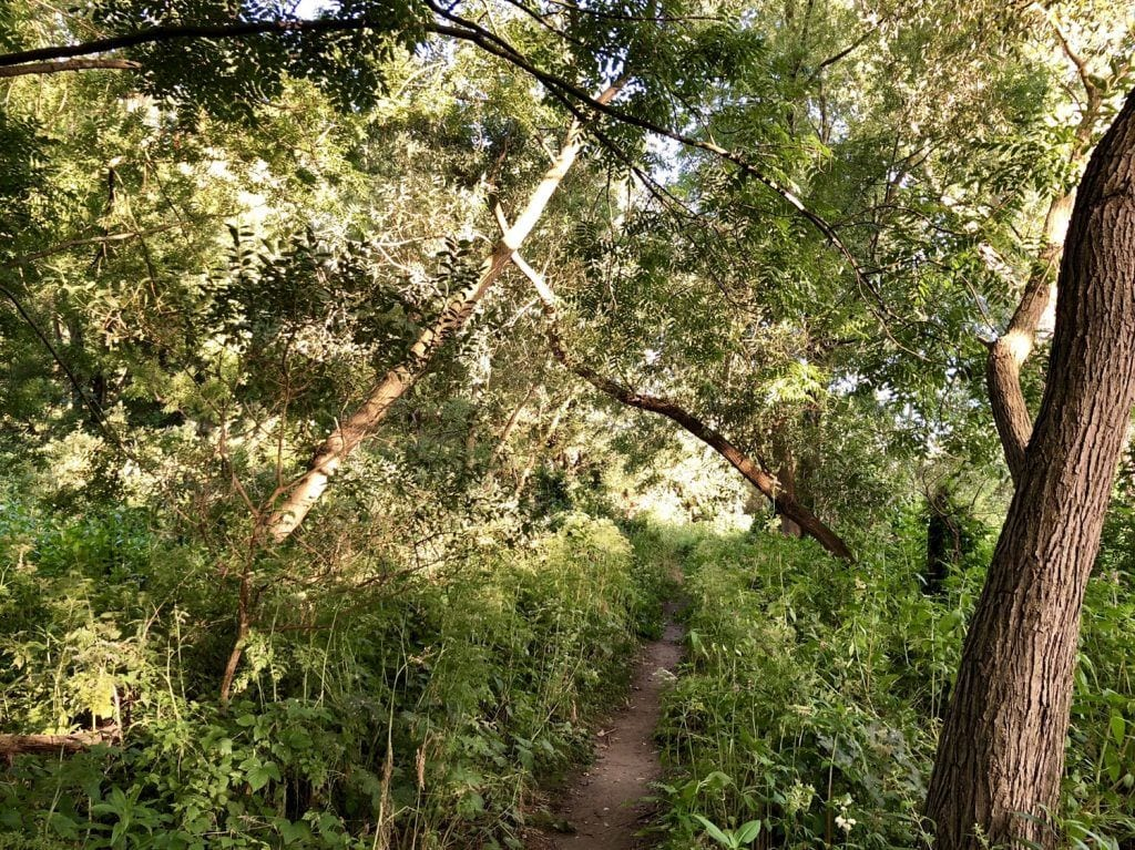 Wanderpfad auf der Kurze Wanderung im Naturschutzgebiet Heuckenlock