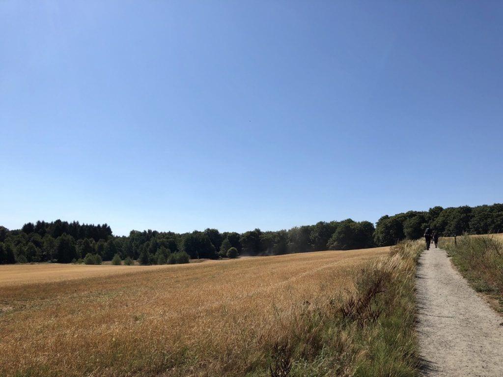 Auf der Wanderung auf dem Skåneleden bei Torup