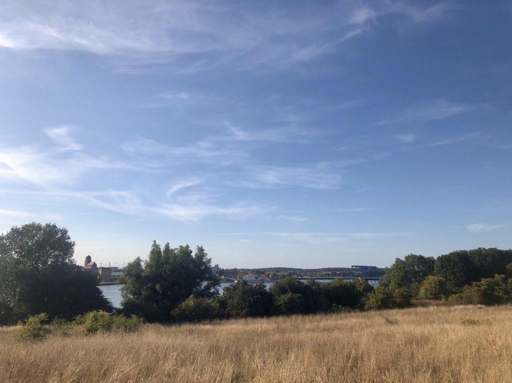 Blick auf Wolgast und die Peenebrücke vom Ostufer der Peene aus