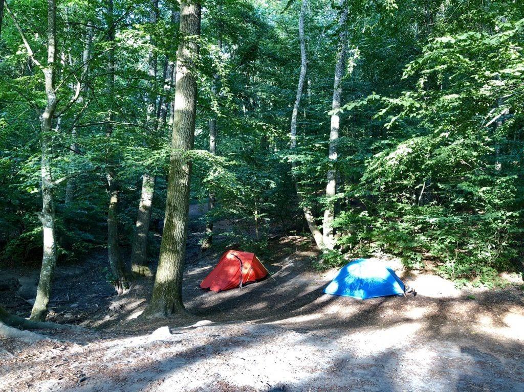 Der Lagerplatz im Wald in Torup am Skåneleden Wanderweg