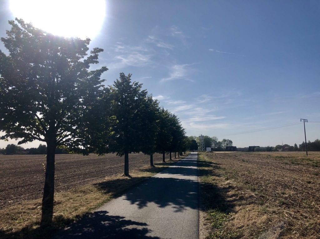 Der Radweg zwischen Neeberg und Sauzin bei der Fahrradtour auf Usedom