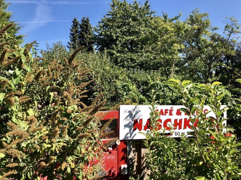Hinter diesem Grün versteckt sich das schöne Gartencafé Naschkatze in Krummin