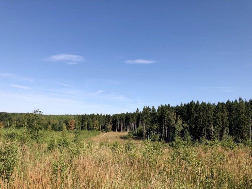 Landschaft am dem Skåneleden in Südschweden