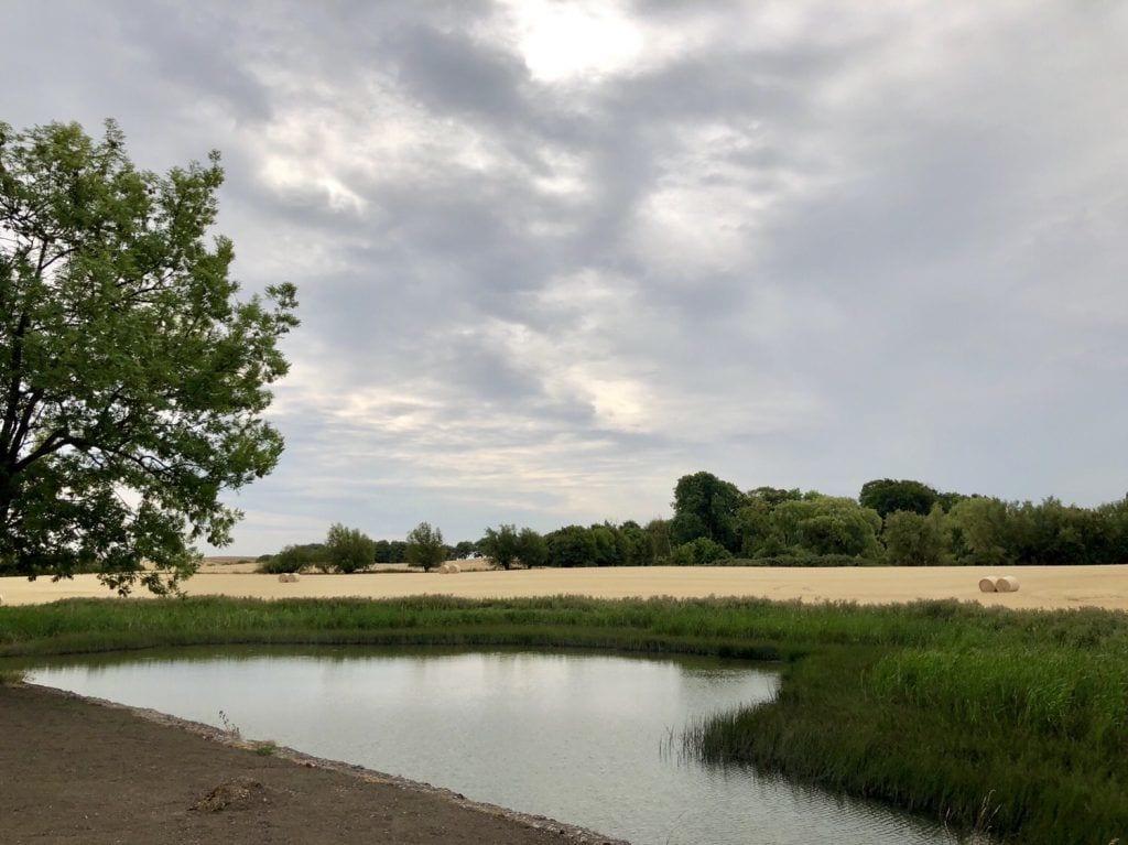 Südschwedische Sommerlandschaft östlich von Malmö
