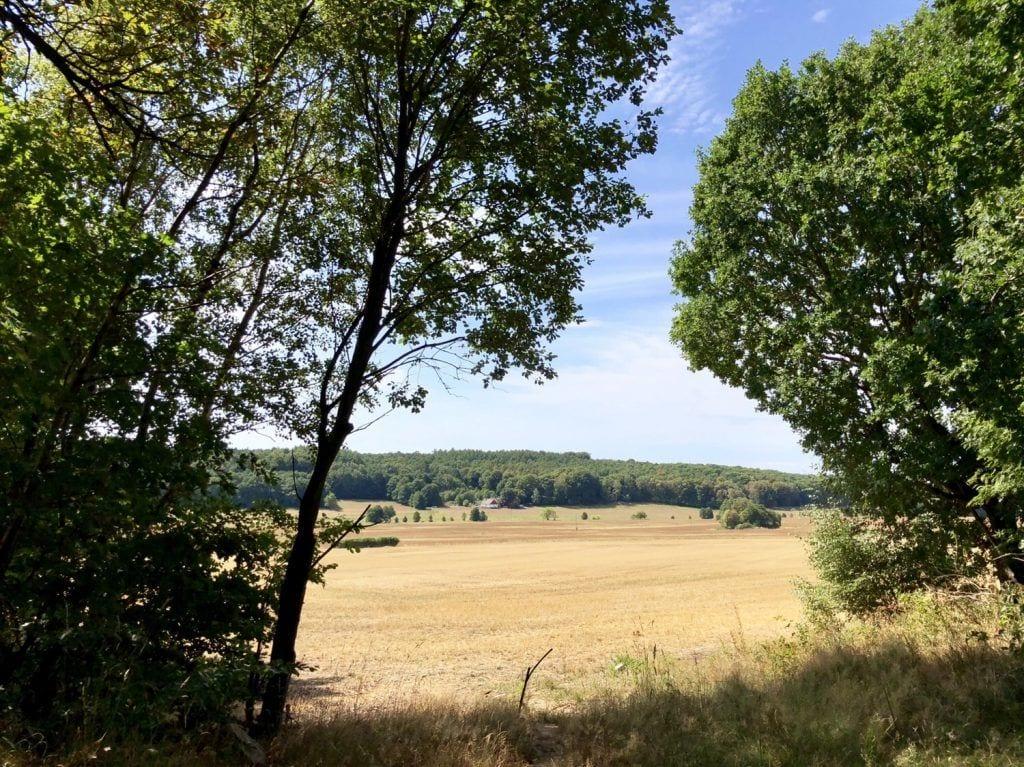 Sommerliche Landschaft am Skaneleden östlich von Malmö