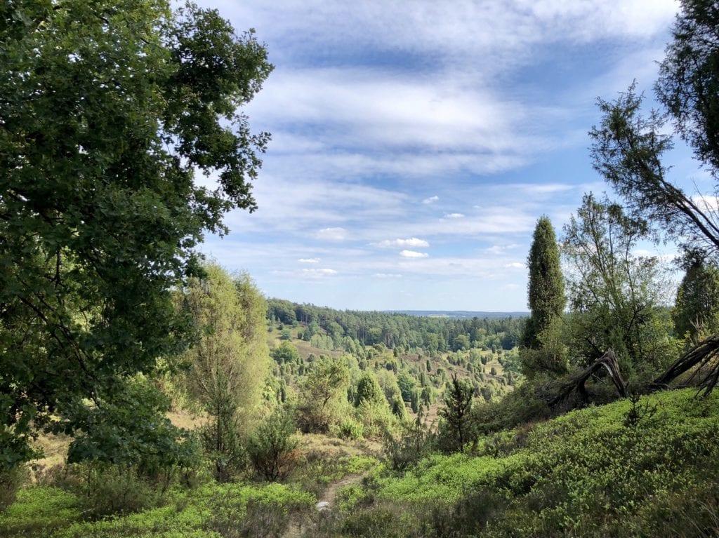 Wandern in der Lüneburger Heide: Blick in den Totengrund bei Wilsede