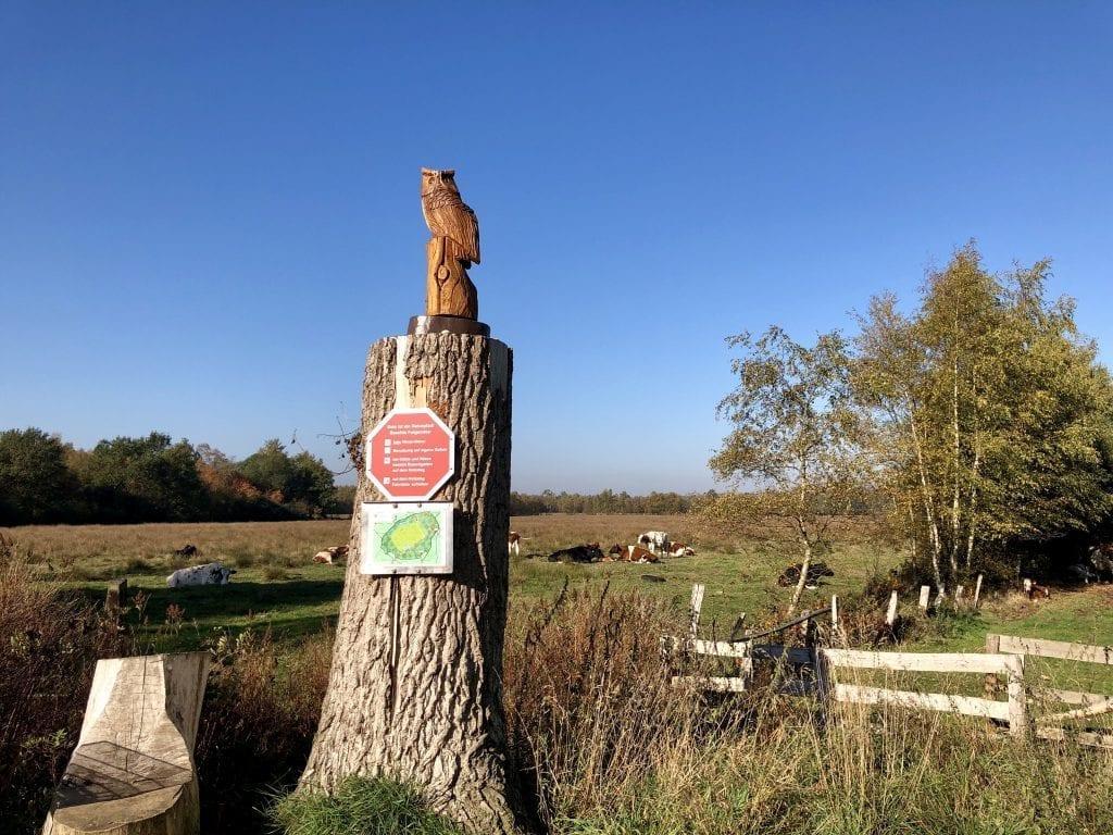 """Am östlichen """"Eingang"""" zum Himmelmoor am Torfwerk - hier startet der Naturlehrpfad - wandern im Himmelmoor"""