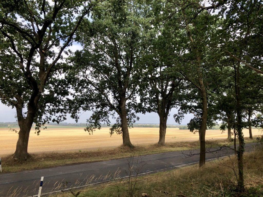 An der Landstraße bei Stove nahe Wismar
