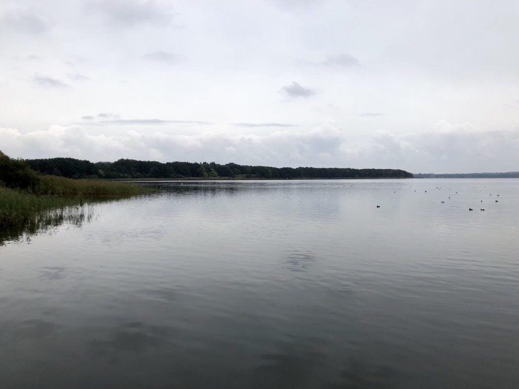 Blick über den Großen Ratzeburger See