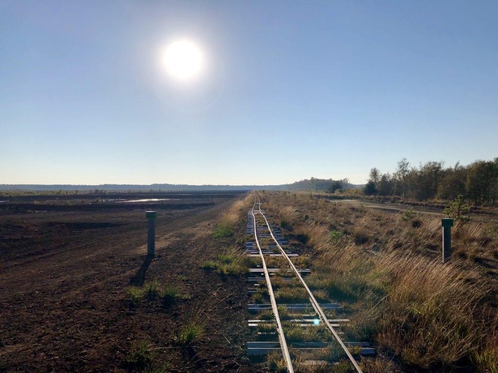 Die Schienen der Torfbahn am nördlichen Rand der Kernzone - wandern im Himmelmoor
