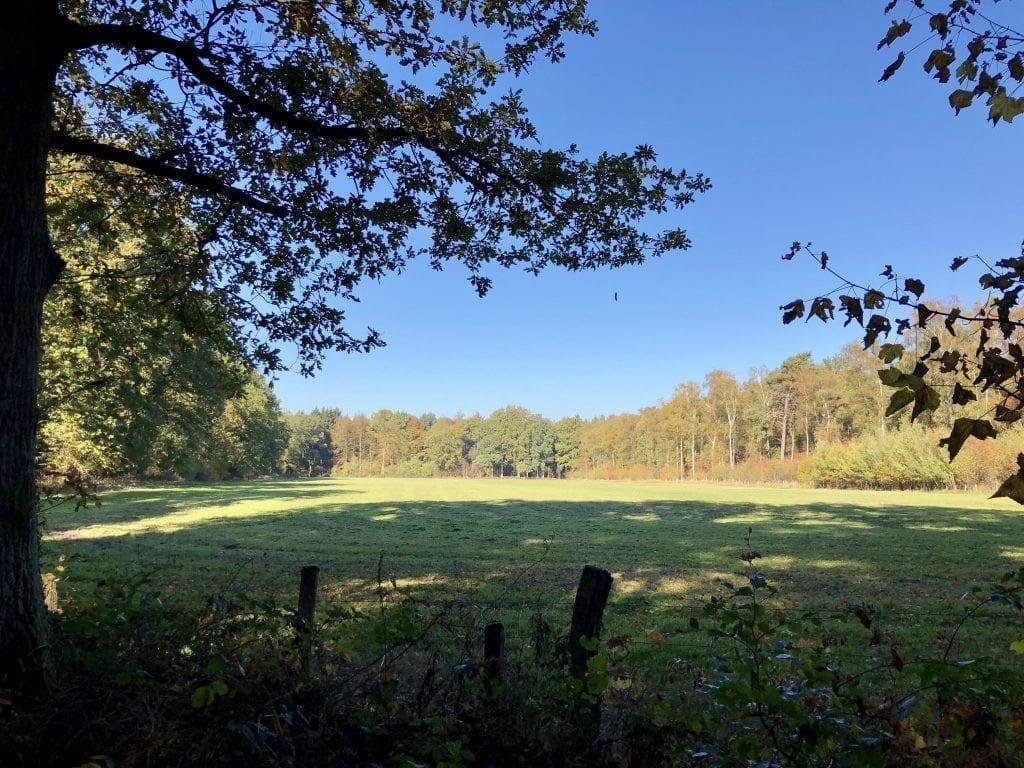 Landschaft westlich des Himmelmoores am Borsteler Wohld