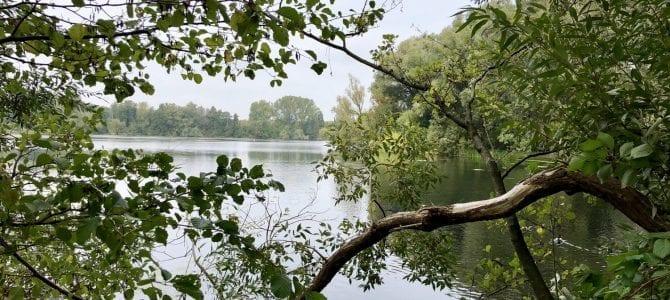 Wandern von Lübeck entlang der Wakenitz an den Ratzeburger See