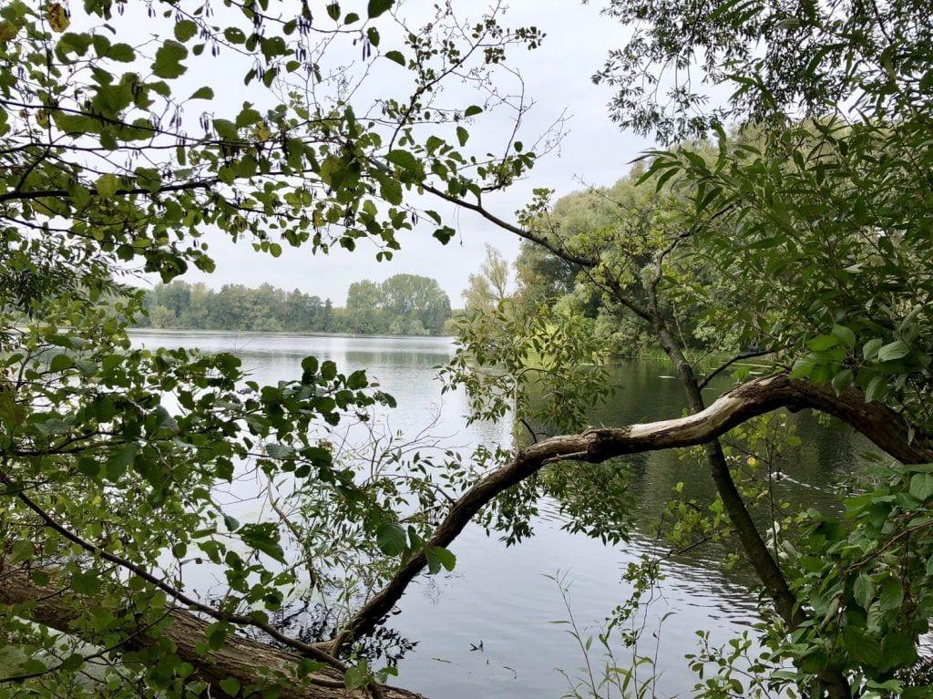 Morgendliche Idylle am Ufer der Wakenitz in Lübeck