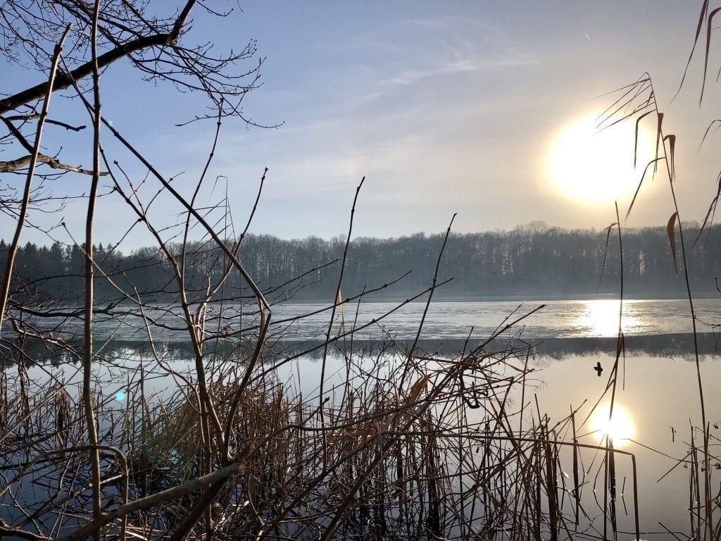 Winterliche Idylle am Schierensee in der Bornhöveder Seenkette