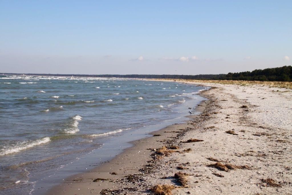 Der Ostseestrand bei Prerow auf dem Darß