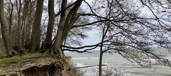 Wandern an der Ostsee: Zwischen Pelzerhaken und Grömitz