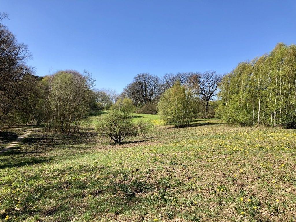 Landschaft nordwestlich von Aumühle, östlich von Hamburg