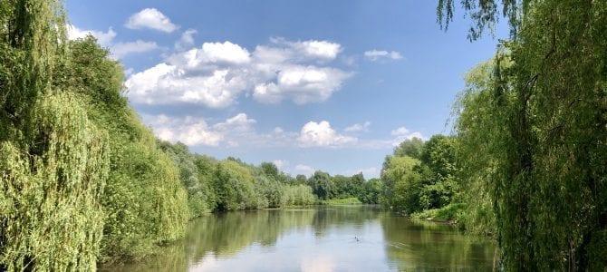 5 schöne & kurze Wanderungen in Hamburg