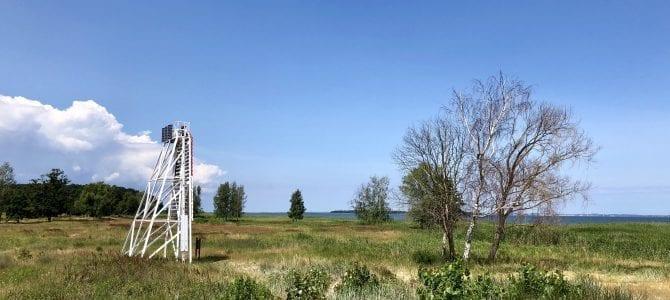 Wandern in Vorpommern: Schöne Rundwanderung am Peenestrom ab Kröslin